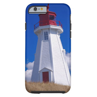 NA, Canada, New Brunswick, Campobello Island. 3 Tough iPhone 6 Case