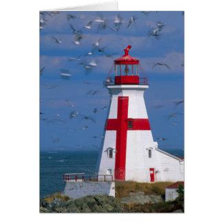 NA, Canada, New Brunswick, Campobello Island. 8 Card