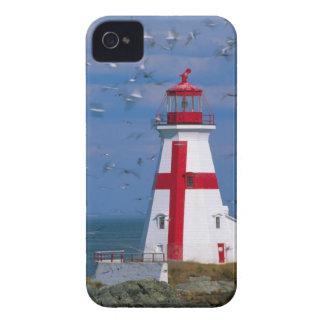 NA, Canada, New Brunswick, Campobello Island. 8 iPhone 4 Case-Mate Cases
