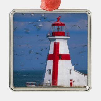 NA, Canada, New Brunswick, Campobello Island. 8 Ornaments