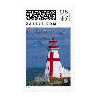 NA, Canada, New Brunswick, Campobello Island. 8 Postage