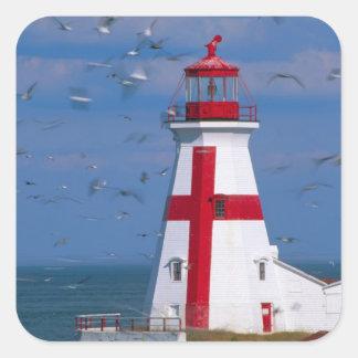 NA, Canada, New Brunswick, Campobello Island. 8 Square Sticker