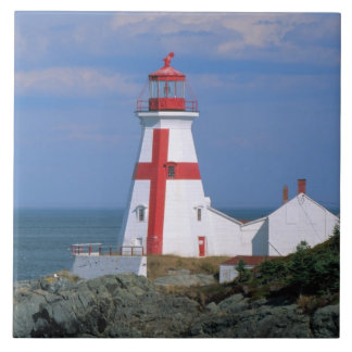 NA, Canada, New Brunswick, Campobello Island. Large Square Tile