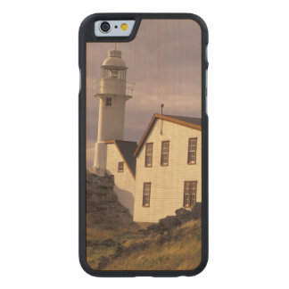 NA, Canada, Newfoundland, Lobster Cove. Lobster Carved® Maple iPhone 6 Case