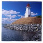 NA, Canadá, Nuevo Brunswick, isla de Campabello Azulejos