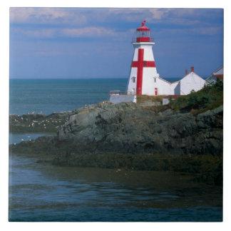 NA, Canadá, Nuevo Brunswick, isla de Campobello. 4 Azulejo Cuadrado Grande