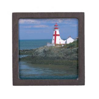 NA, Canadá, Nuevo Brunswick, isla de Campobello. 4 Caja De Recuerdo De Calidad