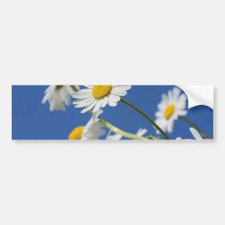 na de la planta de la primavera de la flor de las pegatina para auto