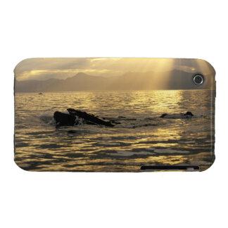NA, los E.E.U.U., Alaska, Alaska suroriental, Funda Para iPhone 3 De Case-Mate