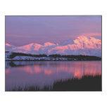 NA, los E.E.U.U., Alaska, Denali NP, el monte