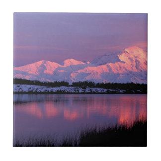 NA, los E.E.U.U., Alaska, Denali NP, el monte Azulejo Cuadrado Pequeño