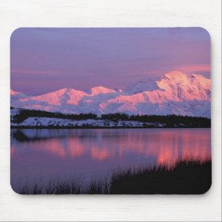 NA, los E.E.U.U., Alaska, Denali NP, el monte McKi Alfombrilla De Ratones