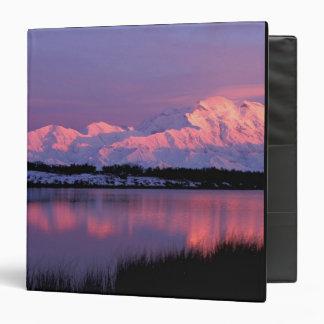 """NA, los E.E.U.U., Alaska, Denali NP, el monte McKi Carpeta 1 1/2"""""""