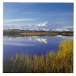 NA, los E.E.U.U., Alaska, Denali NP el monte McKin Tejas Cerámicas