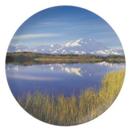 NA, los E.E.U.U., Alaska, Denali NP el monte McKin Plato De Comida
