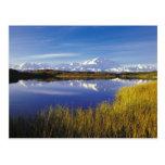NA, los E.E.U.U., Alaska, Denali NP el monte McKin Postal