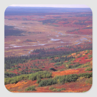 NA, los E.E.U.U., Alaska, Denali NP, opinión Pegatina Cuadrada