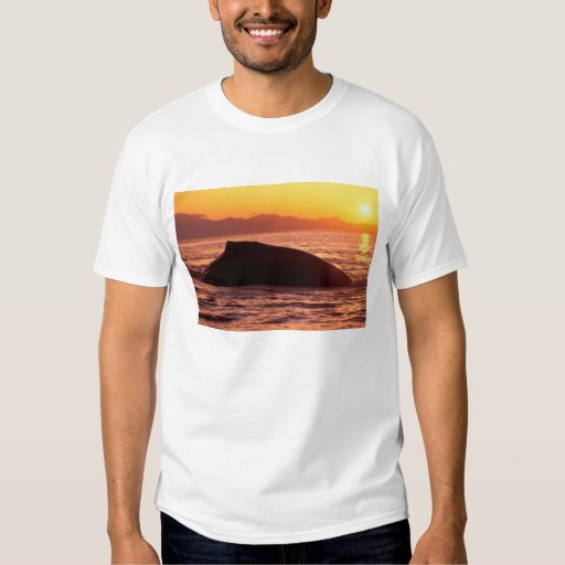 NA, los E.E.U.U., Alaska, dentro del paso, Camisas