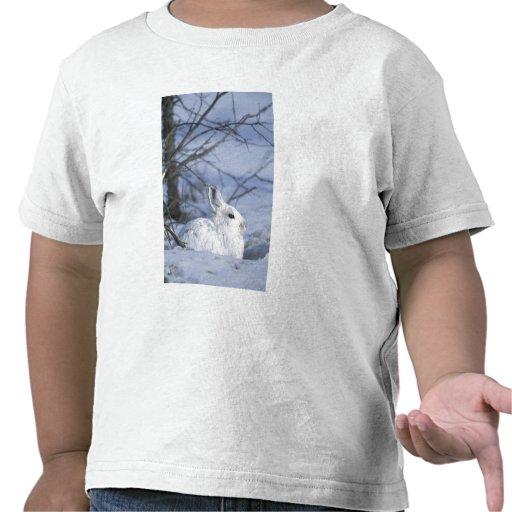 NA, los E.E.U.U., Alaska. Fauna nacional ártica Camiseta