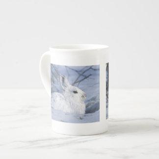 NA, los E.E.U.U., Alaska. Fauna nacional ártica Taza De Porcelana