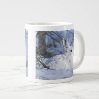 NA, los E.E.U.U., Alaska. Fauna nacional ártica Taza Grande