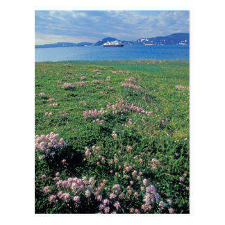 NA, los E.E.U.U., Alaska, isla Aleutian, escénica Postales