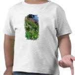 NA, los E.E.U.U., Alaska, islas de Semidi, Camiseta