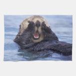 NA, los E.E.U.U., Alaska. Las nutrias de mar son l Toalla De Mano