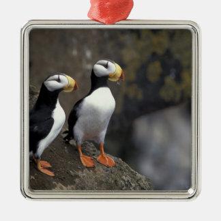 NA los E E U U Alaska mar de Bering Pribilofs Ornamento De Navidad