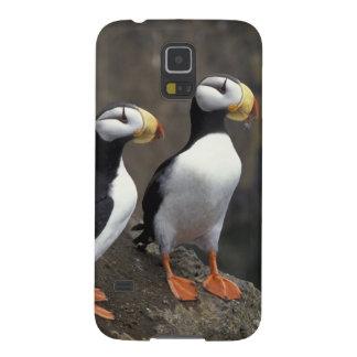 NA, los E.E.U.U., Alaska, mar de Bering, Pribilofs Carcasa De Galaxy S5