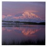 NA, los E.E.U.U., Alaska. Parque nacional de Denal Azulejo Cuadrado Grande