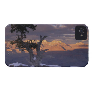 NA, los E.E.U.U., Arizona, Gran Cañón NP, puesta iPhone 4 Case-Mate Coberturas