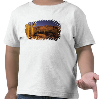 NA los E E U U Arizona monumento nacional del Camisetas