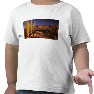 NA los E E U U Arizona monumento nacional del Camiseta