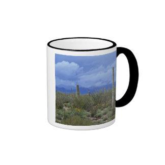 NA los E E U U Arizona monumento nacional del Taza De Café