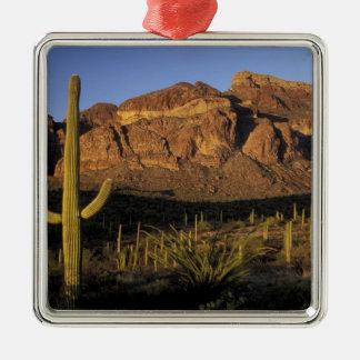 NA, los E.E.U.U., Arizona. Nacional 2 del cactus d Ornamento Para Reyes Magos
