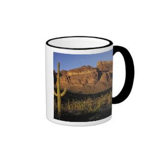 NA, los E.E.U.U., Arizona. Nacional 2 del cactus Taza A Dos Colores
