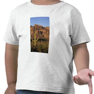 NA los E E U U Arizona Nacional del cactus del Camiseta