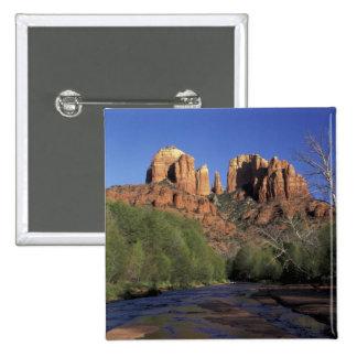 NA, los E.E.U.U., Arizona, Sedona. Roca y roble de Pin Cuadrado