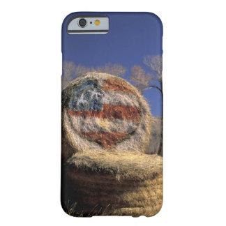 NA, los E.E.U.U., Colorado, Gunnison. Rollo Funda Para iPhone 6 Barely There