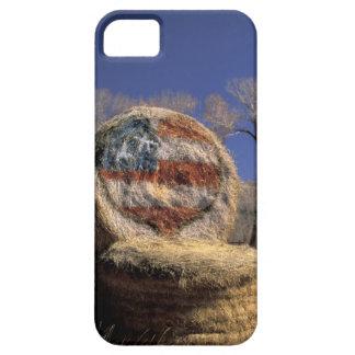 NA, los E.E.U.U., Colorado, Gunnison. Rollo iPhone 5 Fundas