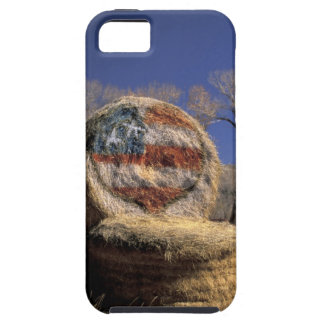 NA, los E.E.U.U., Colorado, Gunnison. Rollo iPhone 5 Funda