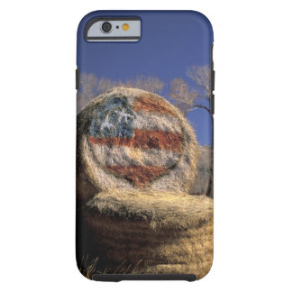 NA, los E.E.U.U., Colorado, Gunnison. Rollo Funda De iPhone 6 Tough
