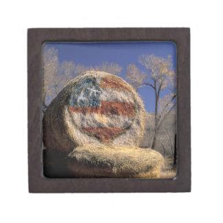 NA, los E.E.U.U., Colorado, Gunnison. Rollo patrió Caja De Recuerdo De Calidad