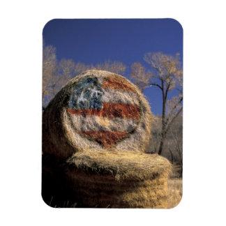 NA, los E.E.U.U., Colorado, Gunnison. Rollo patrió Imanes De Vinilo