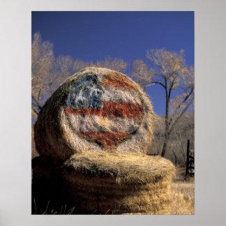 NA, los E.E.U.U., Colorado, Gunnison. Rollo patrió Poster