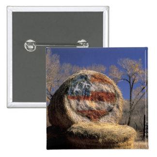 NA, los E.E.U.U., Colorado, Gunnison. Rollo patrió Pin Cuadrada 5 Cm