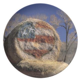 NA, los E.E.U.U., Colorado, Gunnison. Rollo patrió Plato Para Fiesta