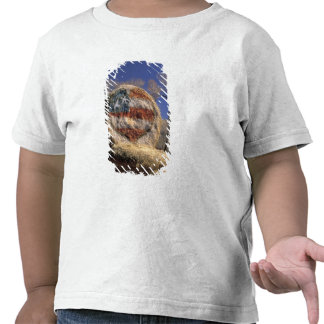 NA, los E.E.U.U., Colorado, Gunnison. Rollo patrió Camisetas