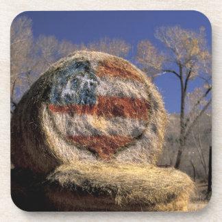 NA, los E.E.U.U., Colorado, Gunnison. Rollo patrió Posavasos